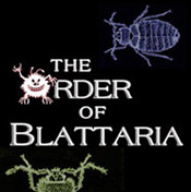The Order of Blattaria